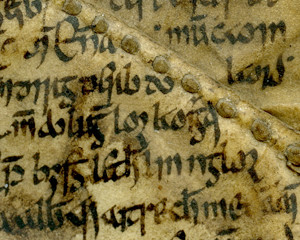 Irish Manuscripts: The Book of Aicill