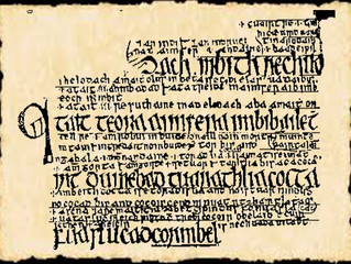 Irish Manuscripts: The Senchus Mór