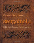 Brehon Laws, Irish History, Ancient Ireland, Language, David Stifter, old irish, middle irish,