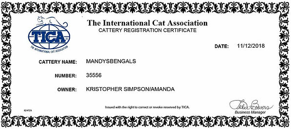 TICAregMandysBengals-Web.jpg
