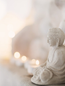 Compassion Betrayed: Spiritual Abuse in an American Zen Center