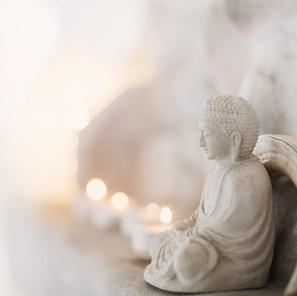 Meditation, why?
