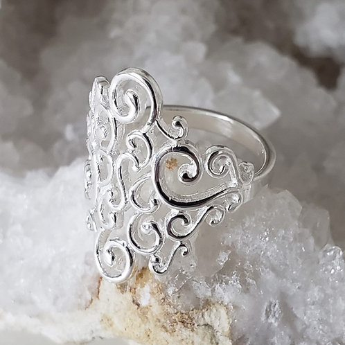 Ricci Ring