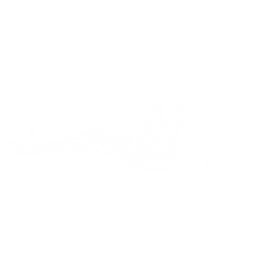 A Twisted Bunch logo