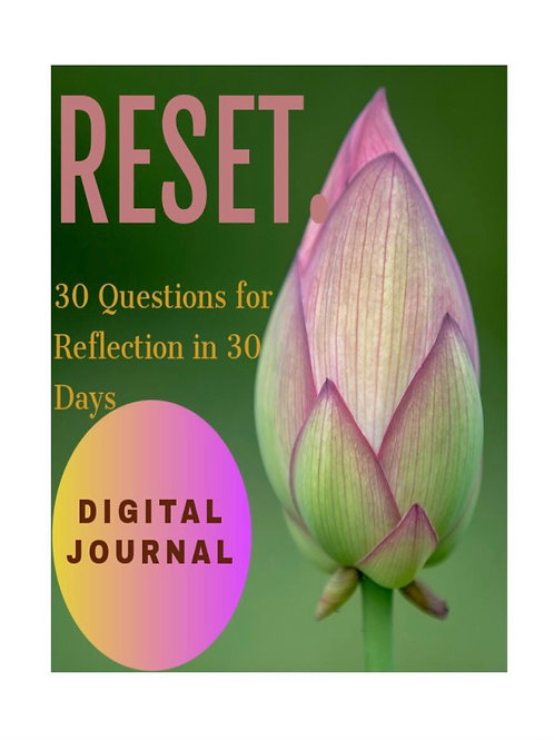 RESET. Digital Journal