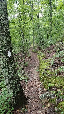 Hamilton Walking Trails