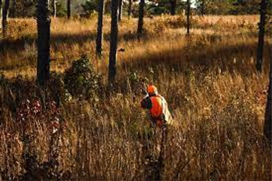 Wildwood Hunting Preserve