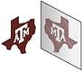 LogoMirror.tiff