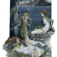 halibut inspired mermaid concept art.