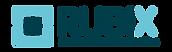 logo-rubix-senses-instrumentation.png
