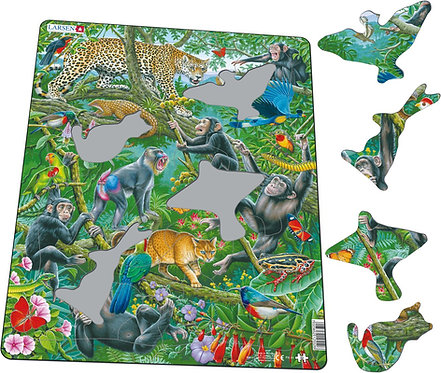 Larsen puzzle Dažďový prales