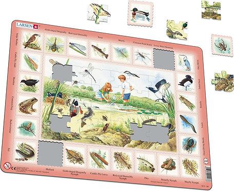 Larsen puzzle Príroda Rybník (anglická verzia)