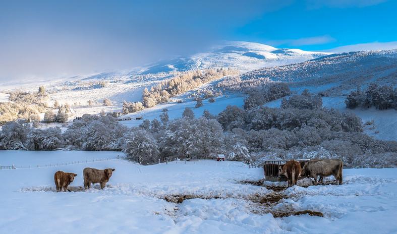 Glen Roy in snow
