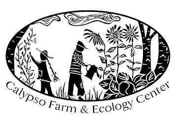 Calypso Logo (1).jpg