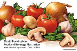 Harrington Illustration 20
