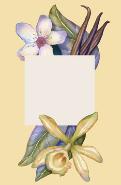 Sweet Nectar Blossom