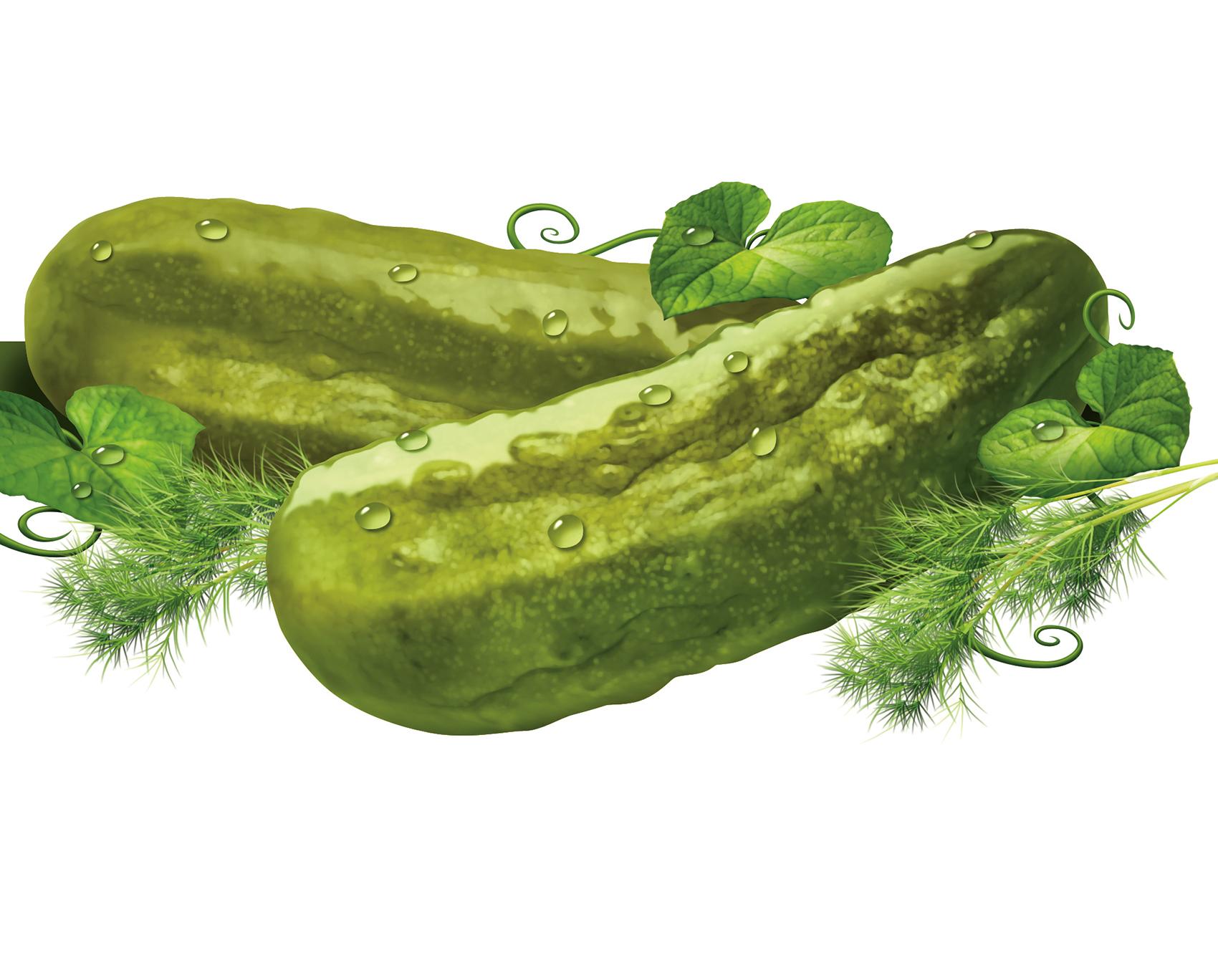 Kosher-Dill