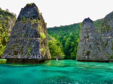 "Dive travel to Raja Ampat: The magnificent ""four Kingdoms"""