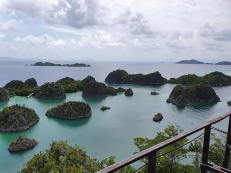 Dive Travel Raja Ampat | March 2020 | Pt.1