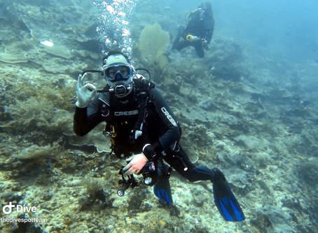 Dive Travel Raja Ampat | March 2020 | Pt.2