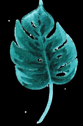 Tropical Leaf three.png