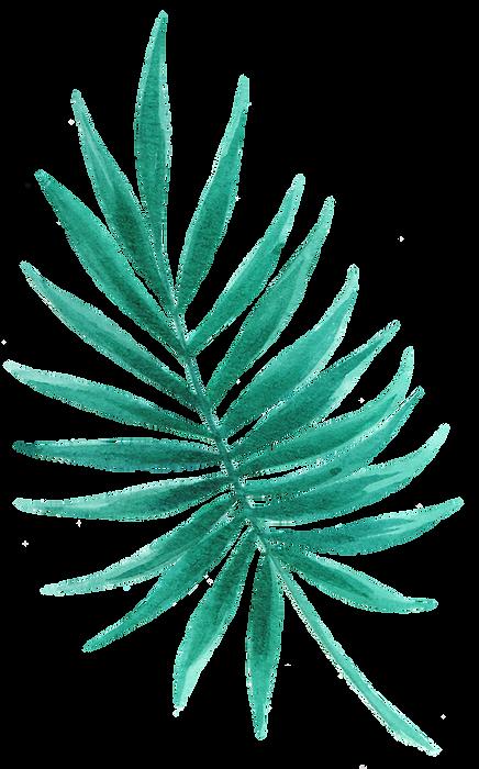 Tropical Leaf seven.png