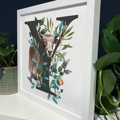 Y for Yak Fine Art Print