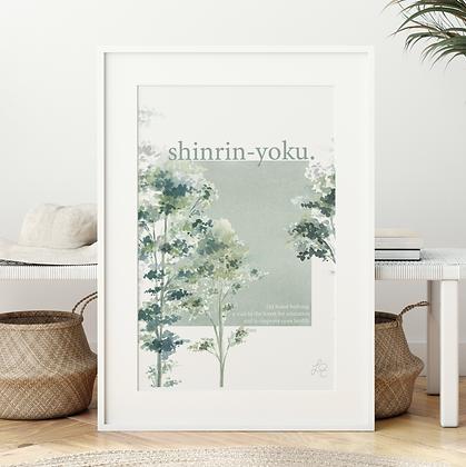 Shinrin-Yoku Fine Art Print