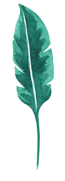 Tropical Leaf two.png