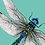 Thumbnail: Dragonfly Greeting Card