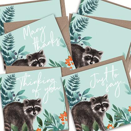 6 Pack Raccoon Greetings Cards