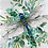 Thumbnail: Botanical Dragonfly Print