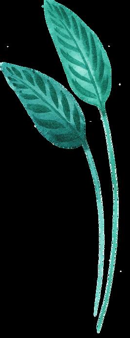 Tropical Leaf one.png