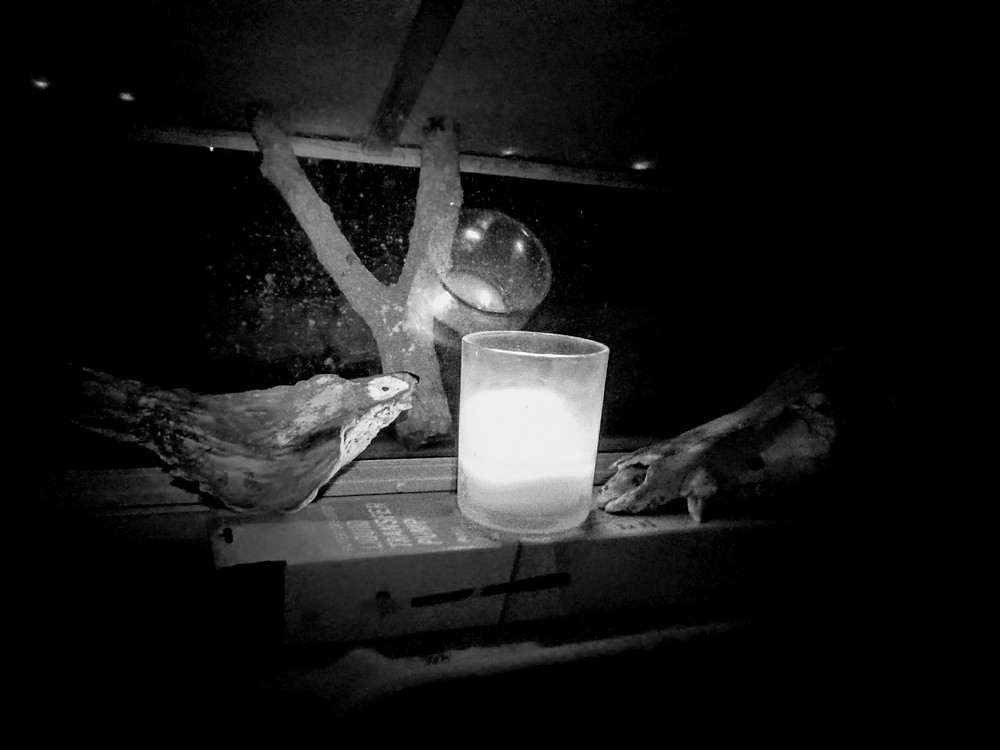 Black and white photo of found sculpture bird next to a candle and a wild hog's skull.