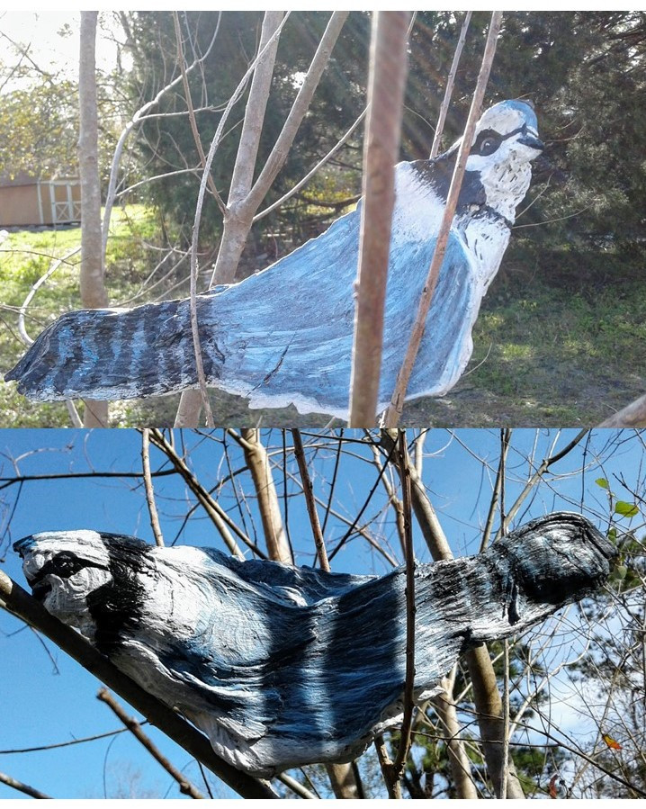Photos of blue-jay painted on found wood.