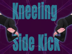Kneeling Side Kick