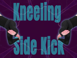 Kneeling Side Kick