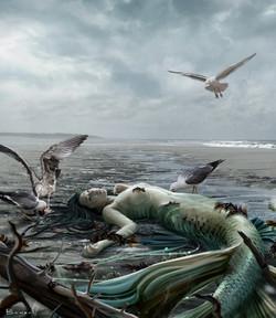 South Mermaids, Beach