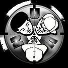 NU Vision Logo copy.png