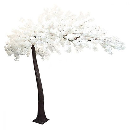 WHITE CHERRY BLOSSOM | CURVED