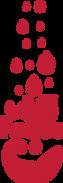 Un quinto Logo.png