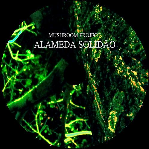 CD Mushroom Project - Alameda Solidão