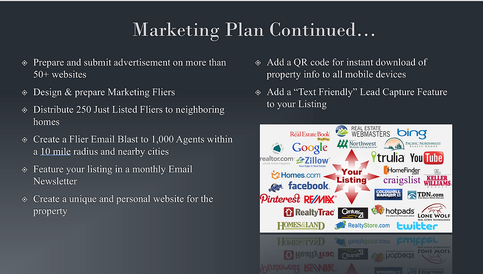 Marketing Plan Slide 2.png