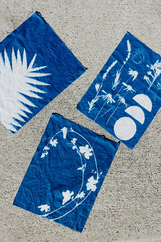 Cyanotype Workshop