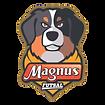 Magnus Futsal.png