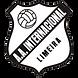 Inter de Limeira.png