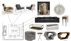 Furniture preliminary options
