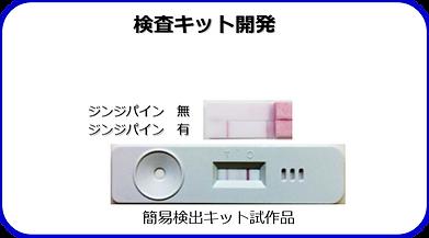 kit-jp.png