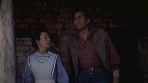 The Construction of Genre and Space in The Searchers