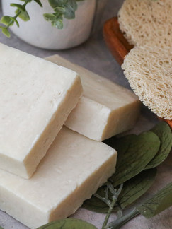 Shampoo Bars, Which One is Right for Me?